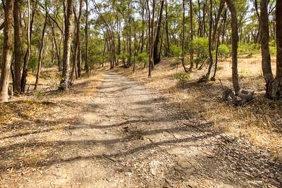 (Image#3402) Castlemaine, Victoria, Australia