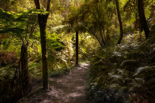 (2529) Lake Elizabeth, Victoria, Australia