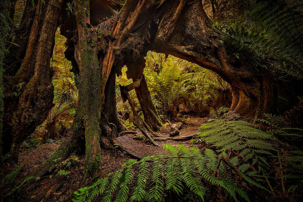 (2148) Maits Rest, Victoria, Australia