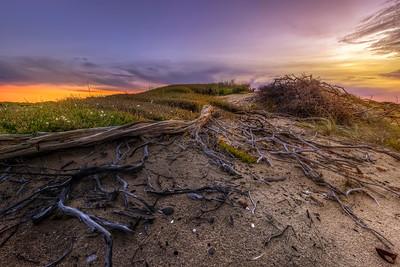 (Image#3475) Black Rock, Victoria, Australia