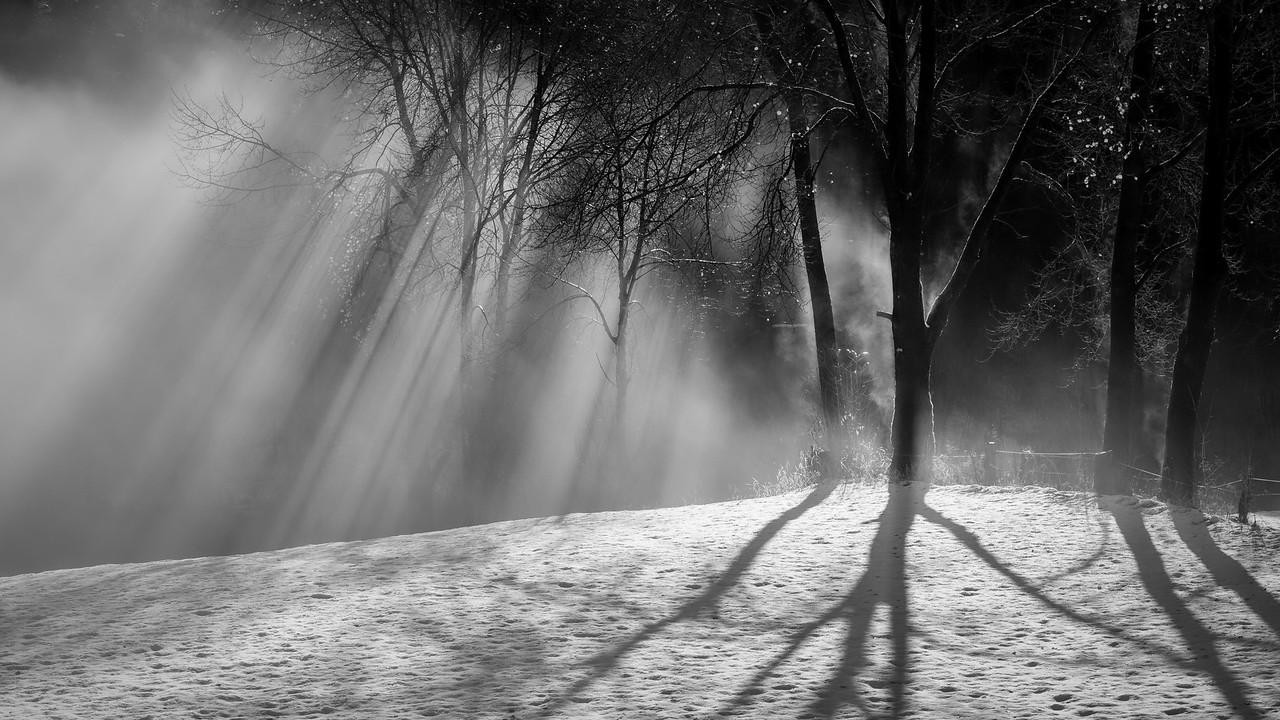Vinterlandskap i sort hvitt
