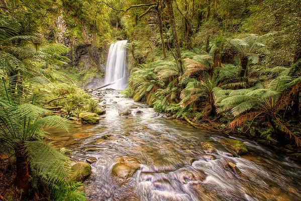 (1846) Beech Forest, Victoria, Australia