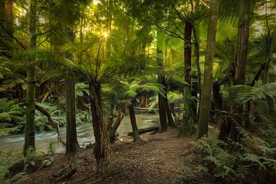 (2740) Triplet Falls, Victoria, Australia
