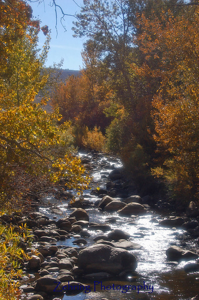 Start of fall color changes Carson River near Markleeville, CA.