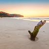 (2153) Addiscot Beach, Victoria, Australia