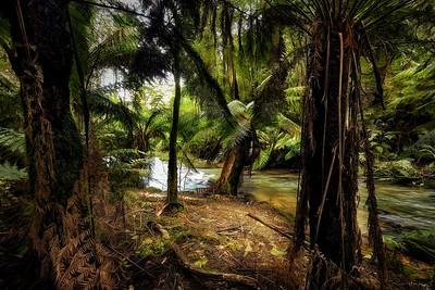 (2650) Triplet Falls, Victoria, Australia