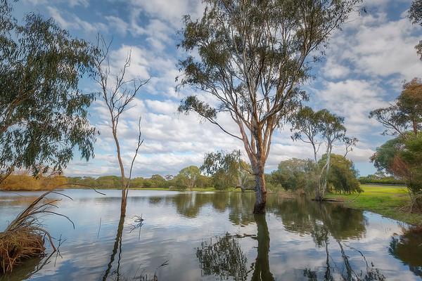 (2474) Drysdale, Victoria, Australia