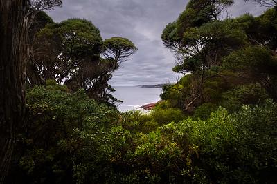(Image#3169) Eden, New South Wales, Australia