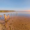 (1687) Lake Connewarre, Victoria, Australia