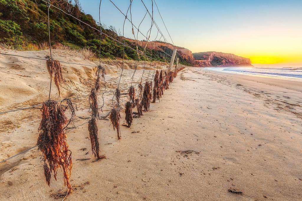 (2130) Addiscot Beach, Victoria, Australia