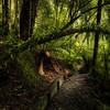 (3075) Little Aire Falls, Victoria, Australia