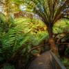 (2173) Maits Rest, Victoria, Australia