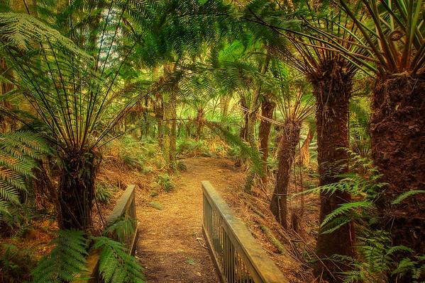 (1866) Melba Gully, Victoria, Australia