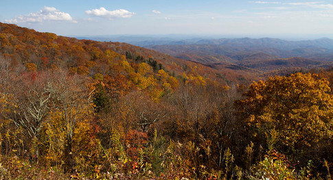 Fall Colors on the Blue Ridge Parkway (near Grandfather Mountain, NC)