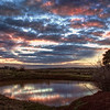 (0120) French Island, Victoria, Australia