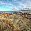 (1169) Bay of Fires, Tasmania, Australia