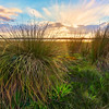 (2360) Lake Modewarre, Victoria, Australia
