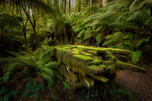 (2531) Triplet Falls, Victoria, Australia