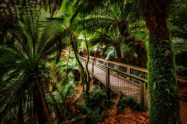 (2329) Maits Rest, Victoria, Australia