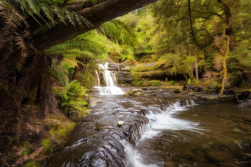 (2438) Liffey Falls, Tasmania, Australia