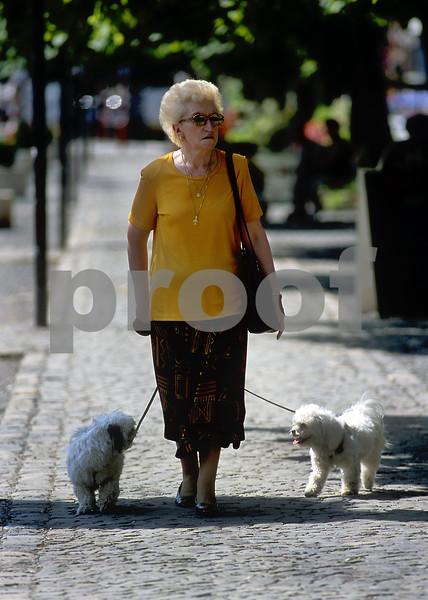 """""""Out Walking/Spa, Belgium"""""""