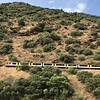 Video of train running along the Douro River near Pocinho, Portugal.