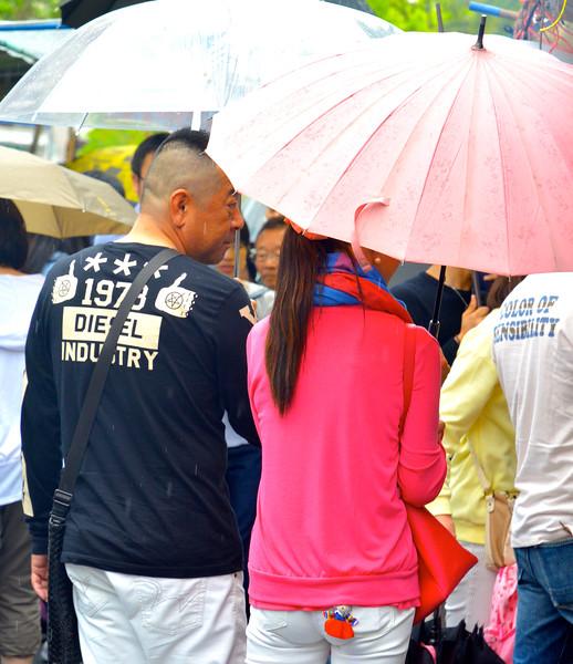Umbrellas of Kochi