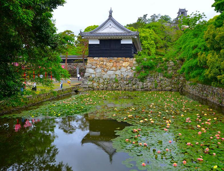 "Kochi castle grounds, see:<br /> <br />  <a href=""http://en.wikipedia.org/wiki/K"">http://en.wikipedia.org/wiki/K</a>ōchi_Castle"