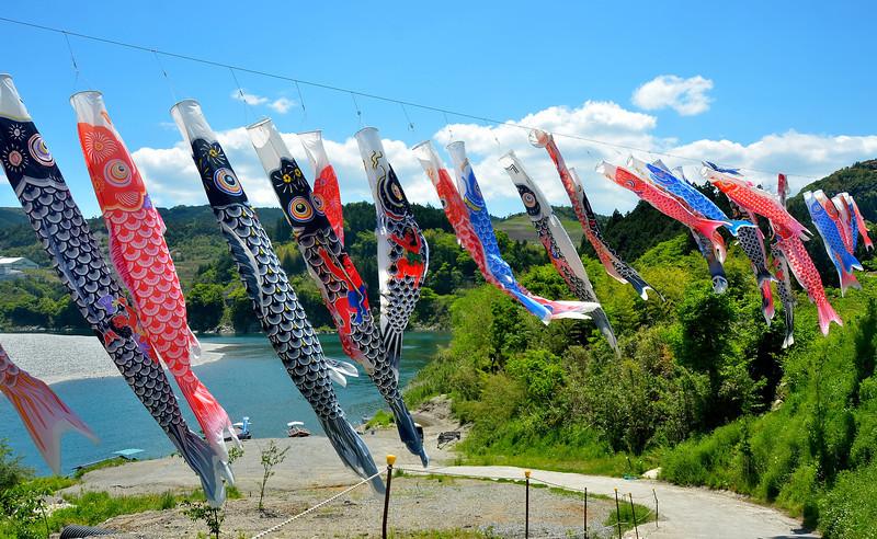 Site of river cruise, Kochi prefecture