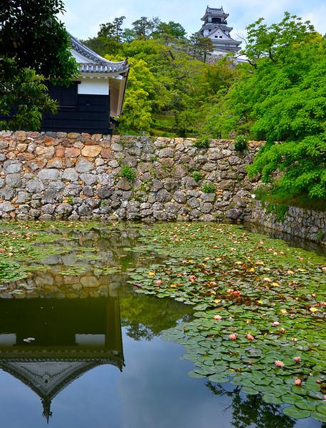 Castle scene in Kochi, Chiyo's hometown.