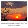 Sunset on the Zambezi Square 10x10
