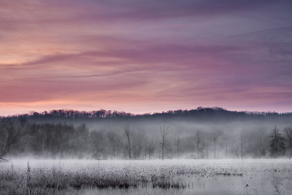 Morning Fog Cuyahoga Valley National Park, Ohio submitted by: Jeffrey Gibson from USA