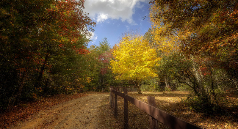 HDR: Our Driveway, North Georgia, USA, October, 2010.
