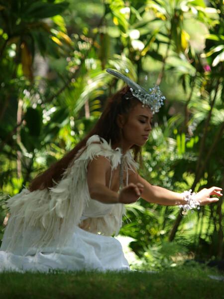 Prince Lot Hula Festival 2011