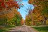 Autumn #2<br /> Michigan, 2012