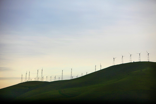 San Francisco Bay, CA: Windmills