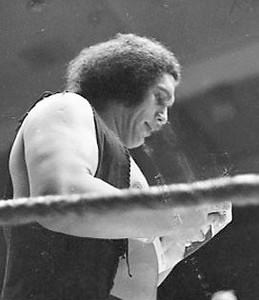 wrestling 1970's031