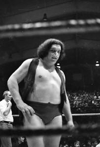 wrestling 1970's029
