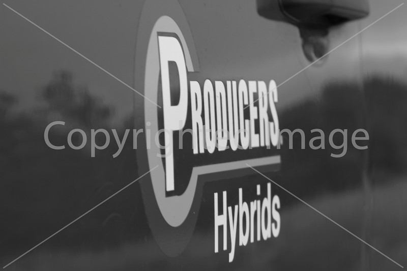 Producers B&W-1