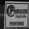 Producers B&W-4