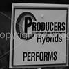Producers B&W-4