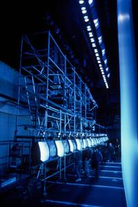 Habitrol scaffold 2