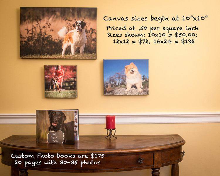Order your customized canvas or book today!