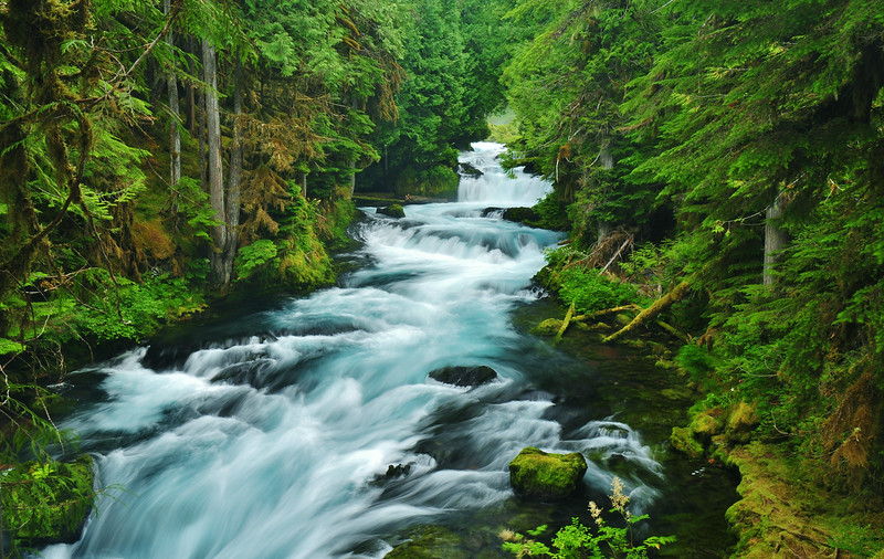 McKenzie River, Oregon