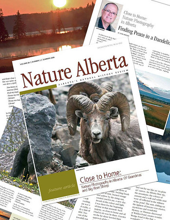 My Articles for Nature Alberta