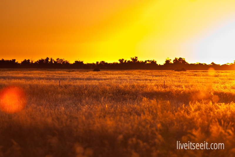 The Sun sets over the Hay Plains in western NSW