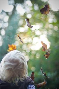 018:365 favorite things (falling leaves)