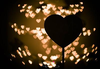 1. 365  E começo assim o projecto 365 cheia de luz e amor! Bom ano para todos, aventura vai começar!