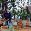 Maryanne Crocker planting, Bushy Bob patting the dog, Mallacoota Caravan Park