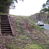 Shady Gully steps removed, saftey issue, blind corner, replaced with boardwalk through gully